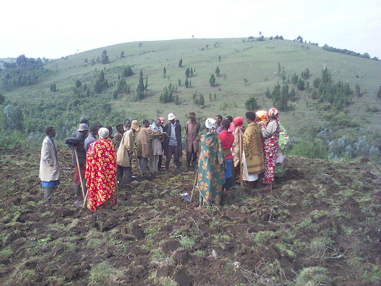 Announcing the Kivumu Community Garden – Jan 2016