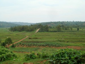 Agricultural fields span the distance