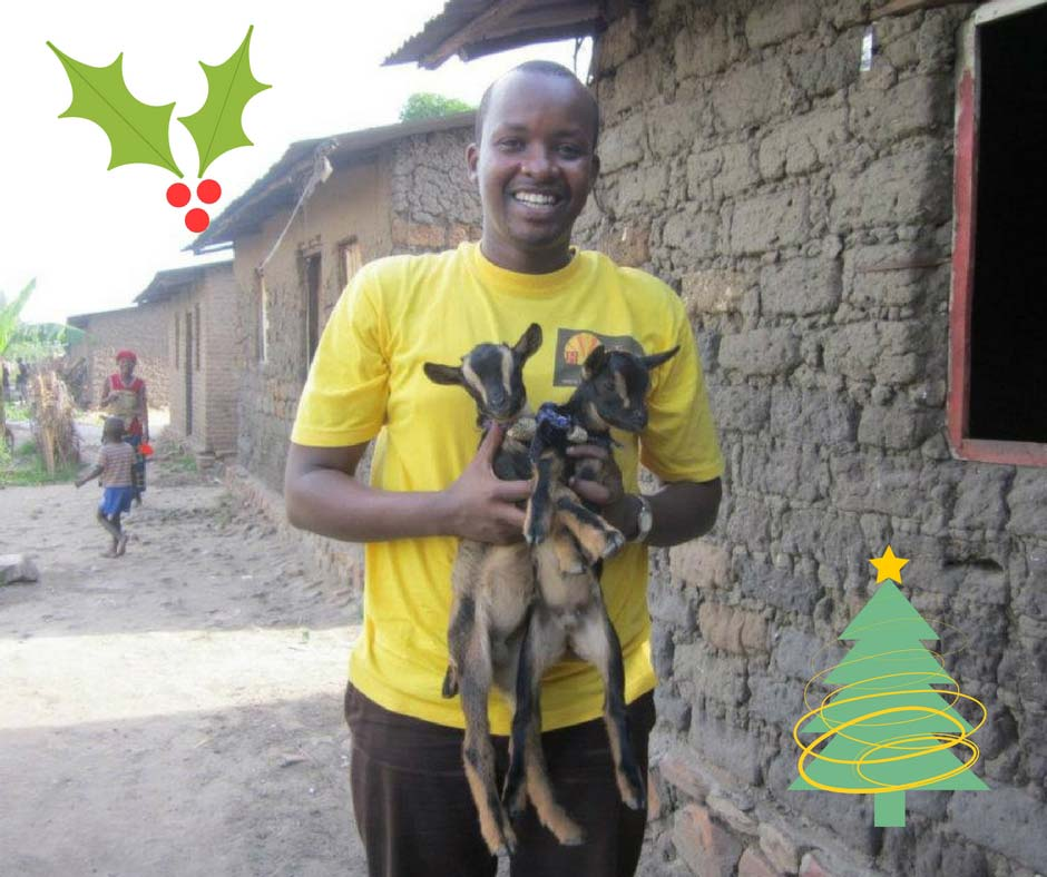 Buy a goat for a family: Donation of $50