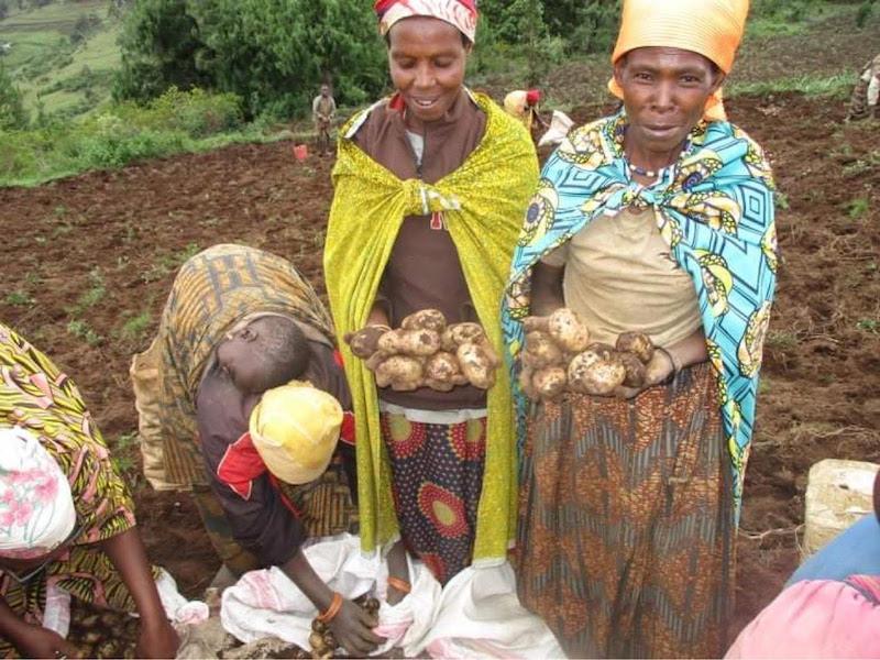 7th Harvest Kivumu Community Garden